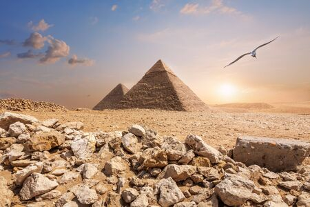 The Pyramid of Chephren and the Pyramid of Cheops, beautiful noon view.