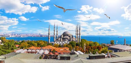 Sultan Ahmet or the Blue Mosque and the Bosphorus Straight in the background, Istanbul panorama,