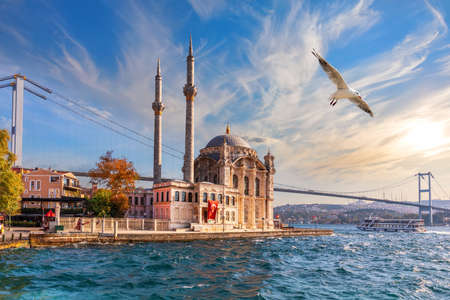 Seagull flies by Ortakoy Mosque, beautiful view from the pier, Istanbul. Stockfoto