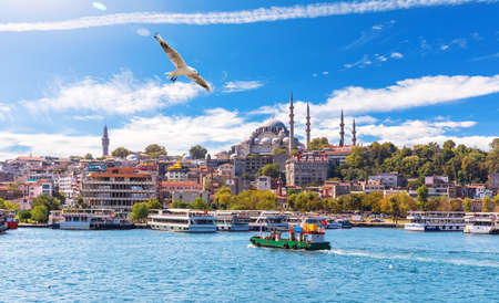 Seagull flies by the Eminonu Pier and Suleymaniye Mosque, Istanbul