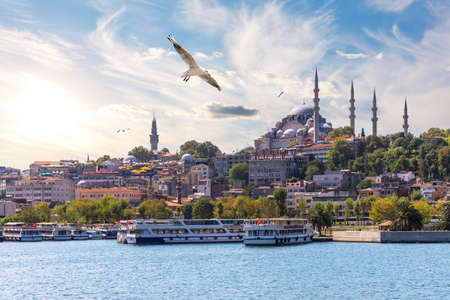 A Seagull flies by the Suleymaniye Mosque in the Golden Horn inlet, Istanbul