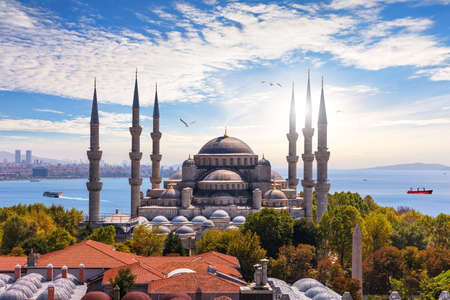 The Blue Mosque of Istanbul or Sultan Ahmet Mosque, Turkey. 免版税图像