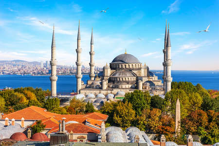 Sultan Ahmet Mosque, also known as Blue Mosque of Istanbul, Turkey. 免版税图像