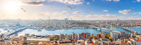Istanbul panorama, bridges and the Golden Horn, skyline view