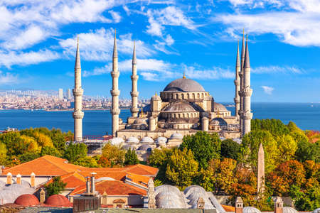 The Blue Mosque or Sultan Ahmet Mosque in the bosphorus, Istanbul 免版税图像