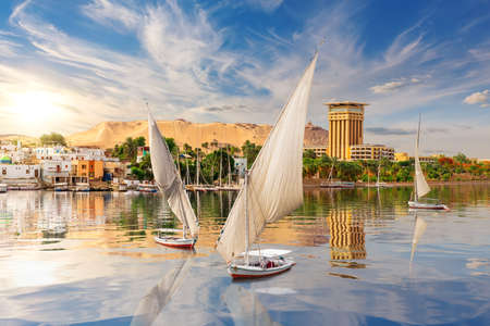The Nile river and traditional feluccas in Aswan, Egypt, beautiful summer scenery 免版税图像