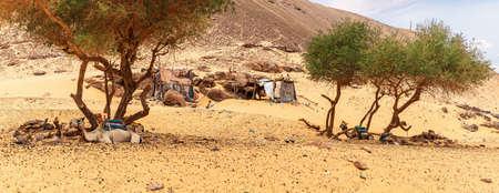 Bedouin village in the Nubian Desert, Sahara, Egypt