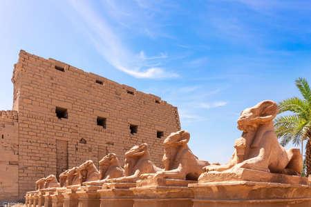 Karnak Temple, ram-headed sphinx statues, Luxor, Egypt 免版税图像