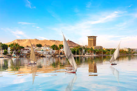 The Nile and sailboats in Aswan, Egypt, summer scenery. 免版税图像