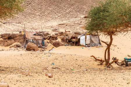 Typical bedouin's tents in the desert of Africa, Egypt.