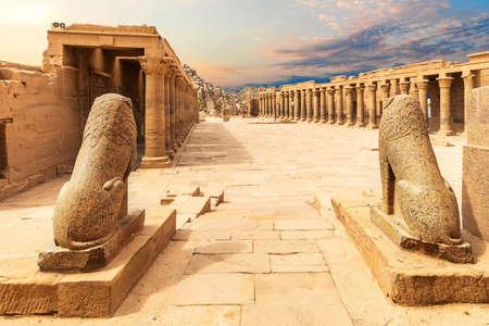 Lion Statues, Temple of Isis, Philae, Aswan, Egypt 免版税图像