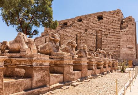 Sphinx Alley in Karnak Temple complex, Luxor, Egypt 版權商用圖片