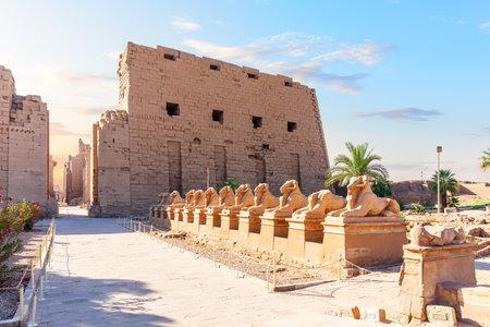 Avenue of Sphinxes near the Karnak Temple entrance, Luxor, Egypt