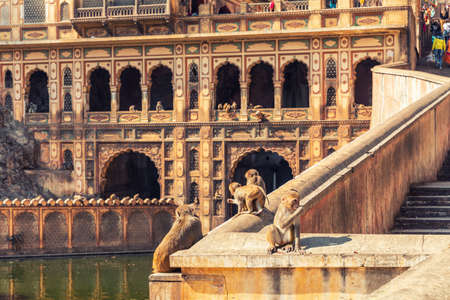 Monkey Temple main facade view, Jaipur, India. 版權商用圖片