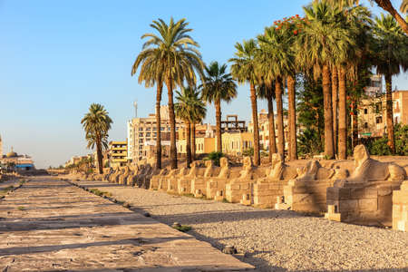 Sphinx Alley by the Luxor Temple main entrance, Egypt.