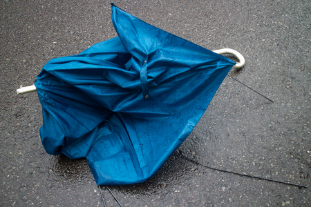 guerrilla: Broken umbrella