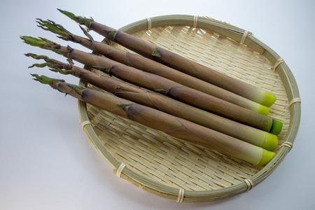shoots: Thin bamboo shoots
