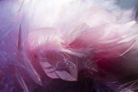 pink fur: Pink fur shawl