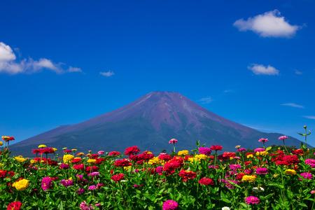 Midsummer of Mount Fuji