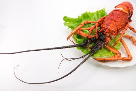 Spiny lobster fried whole