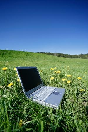 field work laptop outside in the meadow photo