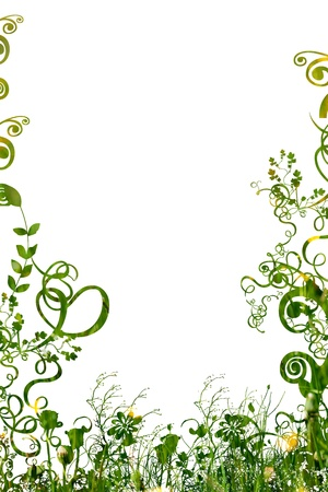 fancy border: floral foliage beautiful arty background against white