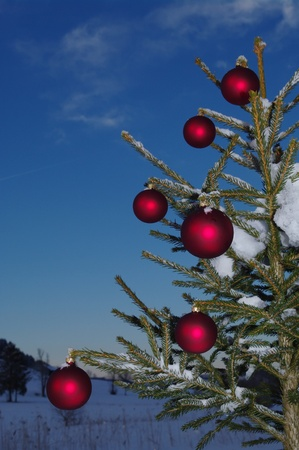 baubles  on a Christmas tree outside in a snowy landscape Stock Photo - 11008651