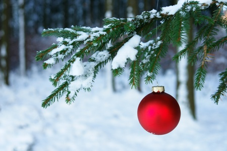a red bauble in snowy winter landscape Stock Photo