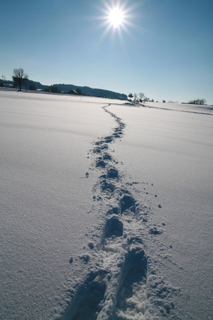 Footprints in the snow Tracks in the snow............ Stock Photo