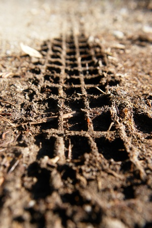 tread: Close-up of a mountainbike track