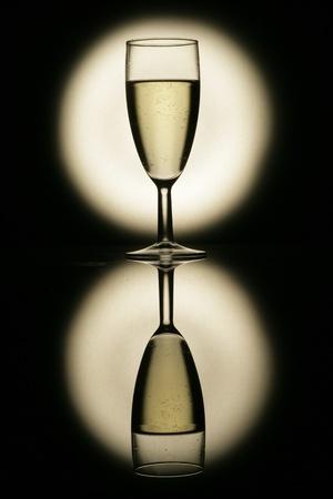 sparkling champagne wine glasses shot in studio Stock Photo - 11139101