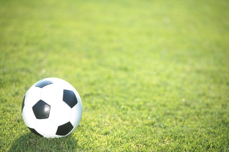 worldcup: football in the grass