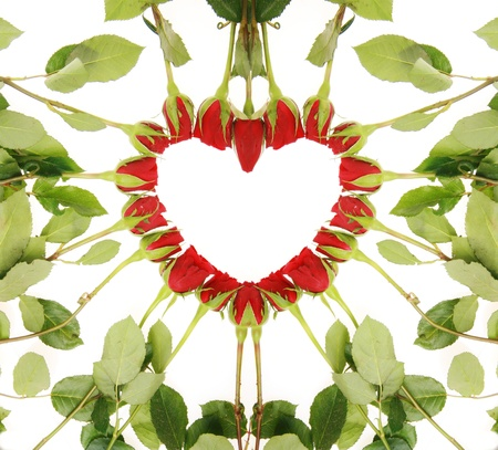 red roses forming a heart on a white background......................