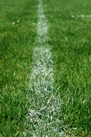 soccer field close-ups of markings on a sunny day photo