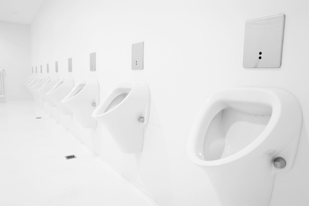 flushing: a clean new public toilet room empty