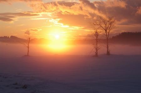a romantic misty winter golden orange sunset photo