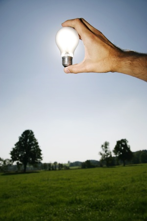Global Concept of Green Energy Solutions With Light bulb and Planet on Bright Landscape photo