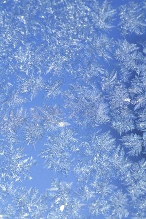 deep freeze: noche azul helada textura patr�n en el cristal