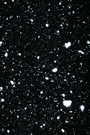 real snowflakes falling at night out doors photo