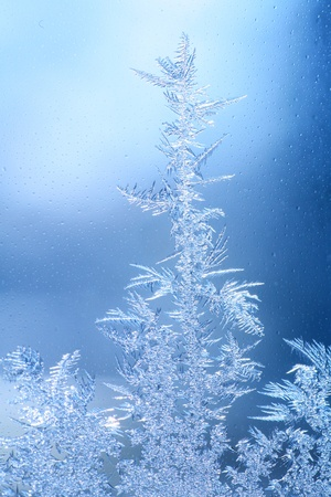 The patterns made by the frost on the window (hoarfrost background) photo