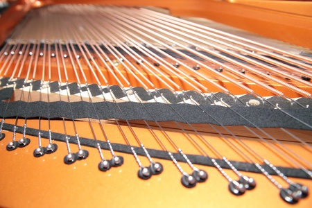inside the piano: string, pins and hammers photo