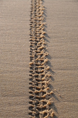 indentation: tyre tracks on the sand of the beach Stock Photo