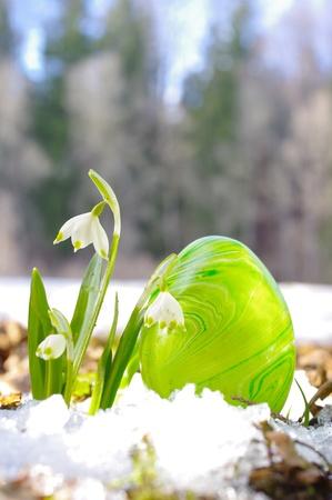 pasen bloemen en eieren