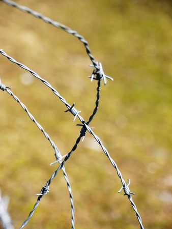 the metal wire on green background Stock Photo - 19267084