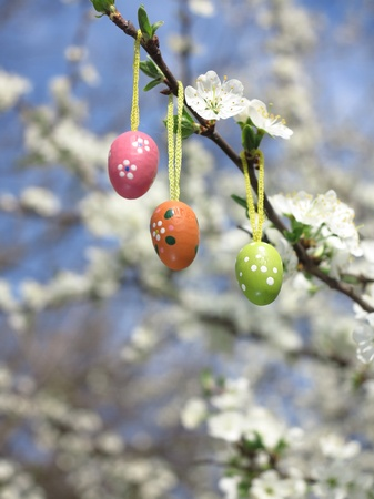 Some colourful easter eggs hanging at branches photo