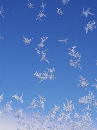 iceflower: frost ice crystal on window background pattern Stock Photo