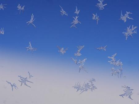 iceflower: cristalli di ghiaccio gelo su un modello di finestra
