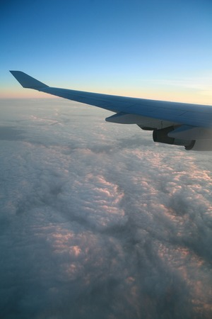 wingtips: wings of an airplane
