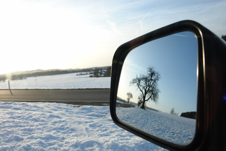 rear view mirror: a tree reflecting i a rear view mirror. Stock Photo