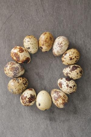 huevos codorniz: Huevos de codorniz sobre un fondo oscuro